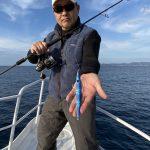 K-FLAT【オーロラ/ミラーパターンの配色がキーポイント】釣れるカラー解析。