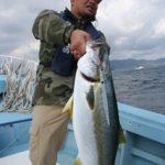 【長崎県対馬、実釣!!】春のヒラマサを春漁丸で狙ってきました。