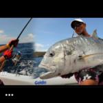 「Goldicのfbページ」釣りに纏わる内容を中心にUPします