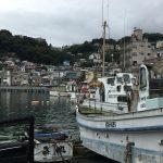 【相模湾マグロは、何処に?】真鶴港から秋のマグロ狙いに出掛けました。