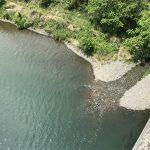 【今年もガサガサ、解禁間近。】相模川系の用水路に水も入り田植えも始まり、いざ。