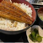 【大好物を食べ続ける美学】今年も大阪で「うなぎ丼」を3日間食べ続けてみた。