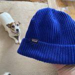 【愛犬ノア‼️またヤラレタ】フィッシャーマンズニット帽、一瞬の隙に。
