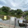 【追跡!TV番組《池の水ぜんぶ抜く》収録後の池は…】半年後の池を見てきました。
