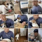 【愛犬動画をYouTubeに更新しようと…】仲間からのリクエストに奮闘。